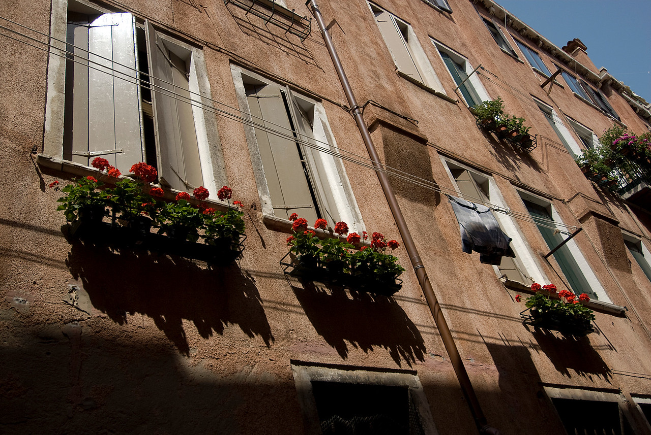 Flower pots on window panes at Venice, Italy