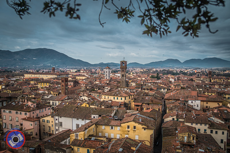 Looking North Over the City of Lucca from the top of Torre Guinigi (©simon@myeclecticimages.com)