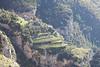 Sentiero degli Dei, Amalfi coast, Campania, Italy.