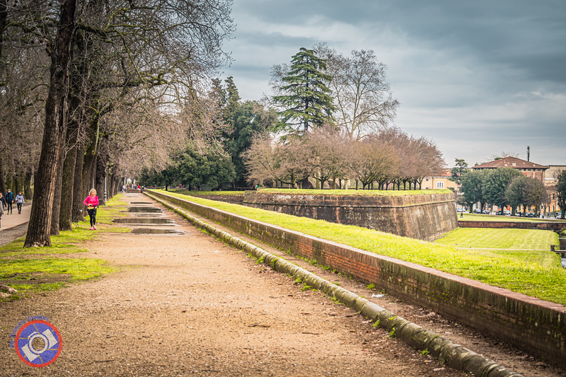A Section of the City Wall of Lucca (©simon@myeclecticimages.com)