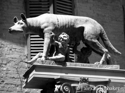 Romulus, Remus and mom.