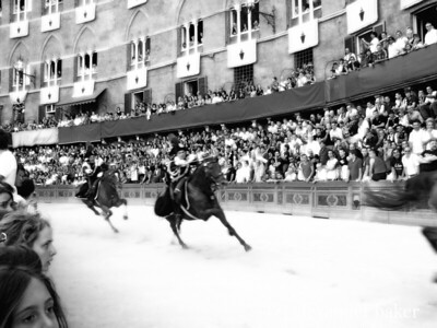 Charge of Caribiniere - provo of the Palio - Siena 2007