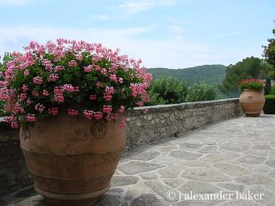 At Castello Vicchiomaggio, Greve, Tuscany