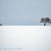 Bulgaria; Snowscape; Sneeuwlandschap