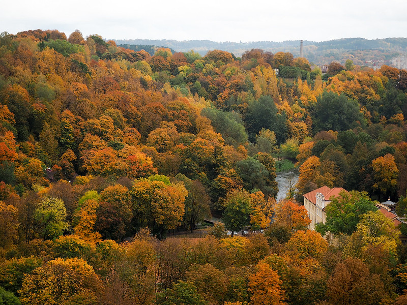 Autumn in Vilnius, Lithuania
