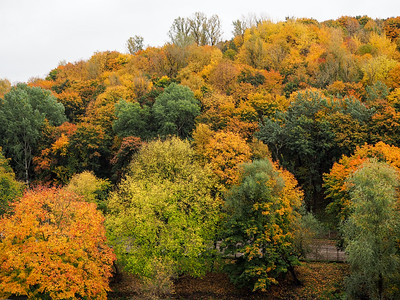 Fall colors in Vilnius, Lithuania