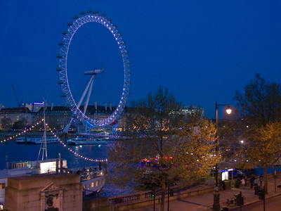 The London Eye, on the Thames River in London England