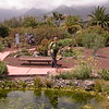 Tn 1689 tuin van Piramides de Guïmar