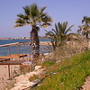 Cy 0001 strand bij Paphos