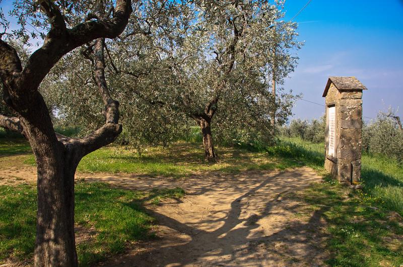 DaVinci's Birthplace