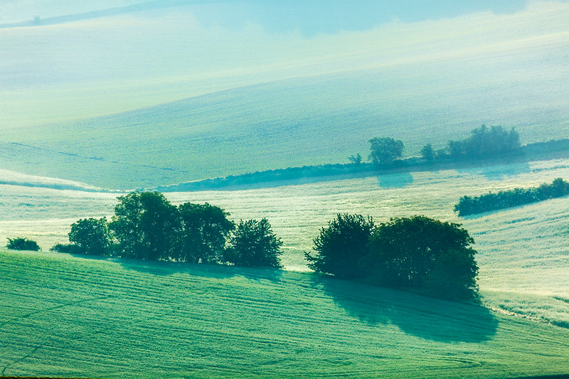 Moravian rolling fields in morning mist