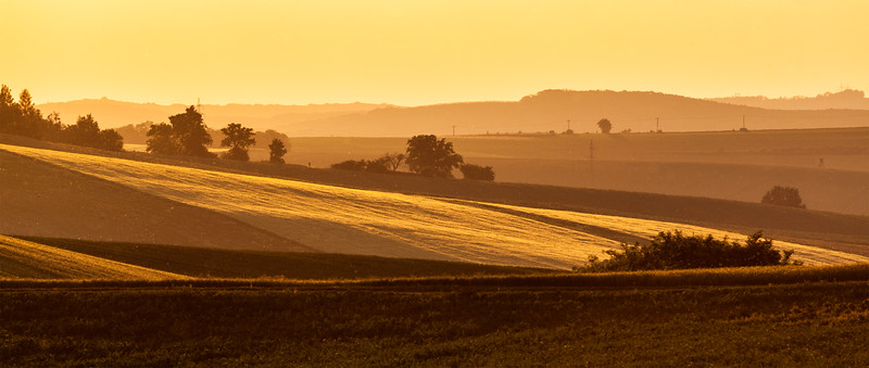 Moravian rolling landscape on sunset