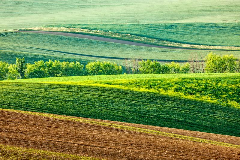 Moravian rolling landscape