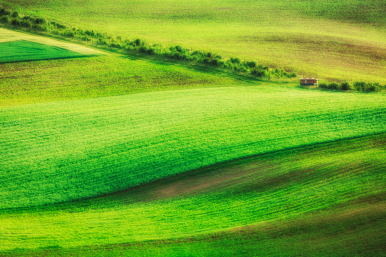 Rolling landscape of  South Moravia