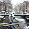 amsterdam-new