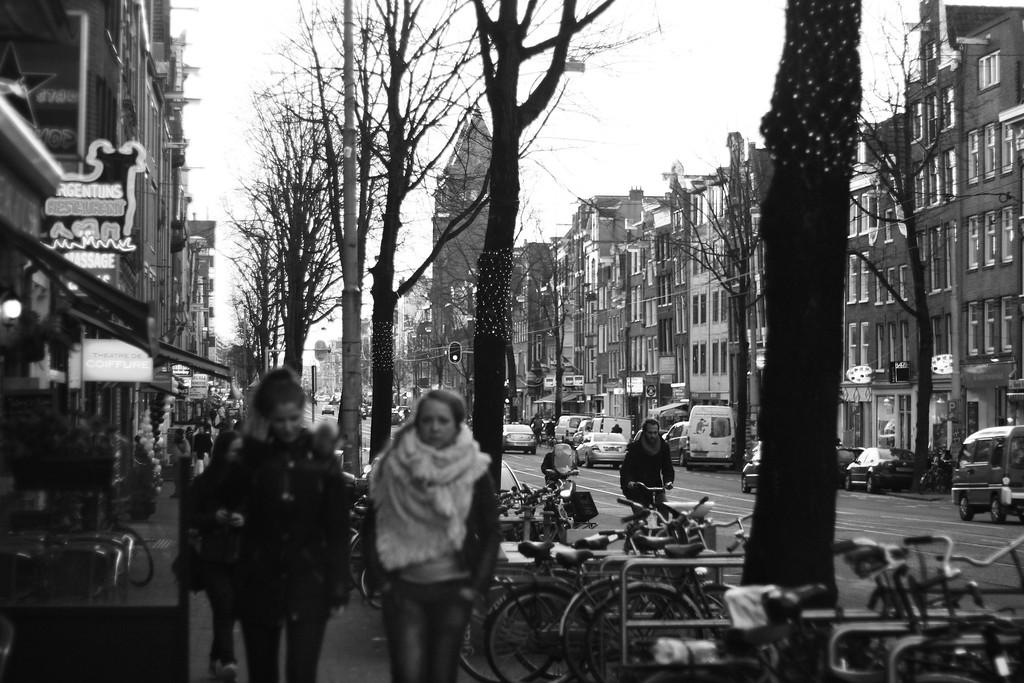 Cold winter walks. January 2013