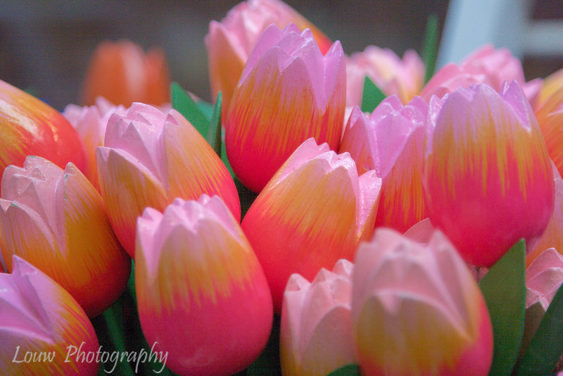 Wooden tulips at the Flower Market, Amsterdam, Netherlands
