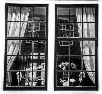 Yet another piece of Art captured at Nieuwe Kerkstraat.