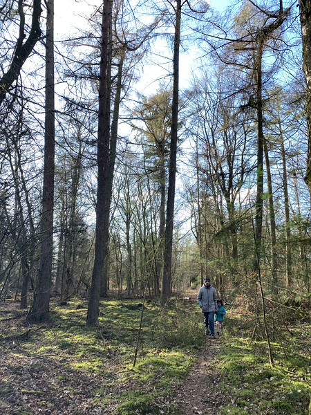 hoge veluwe national park hiking - best day trips from amsterdam