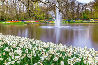 Art around Keukenhof.