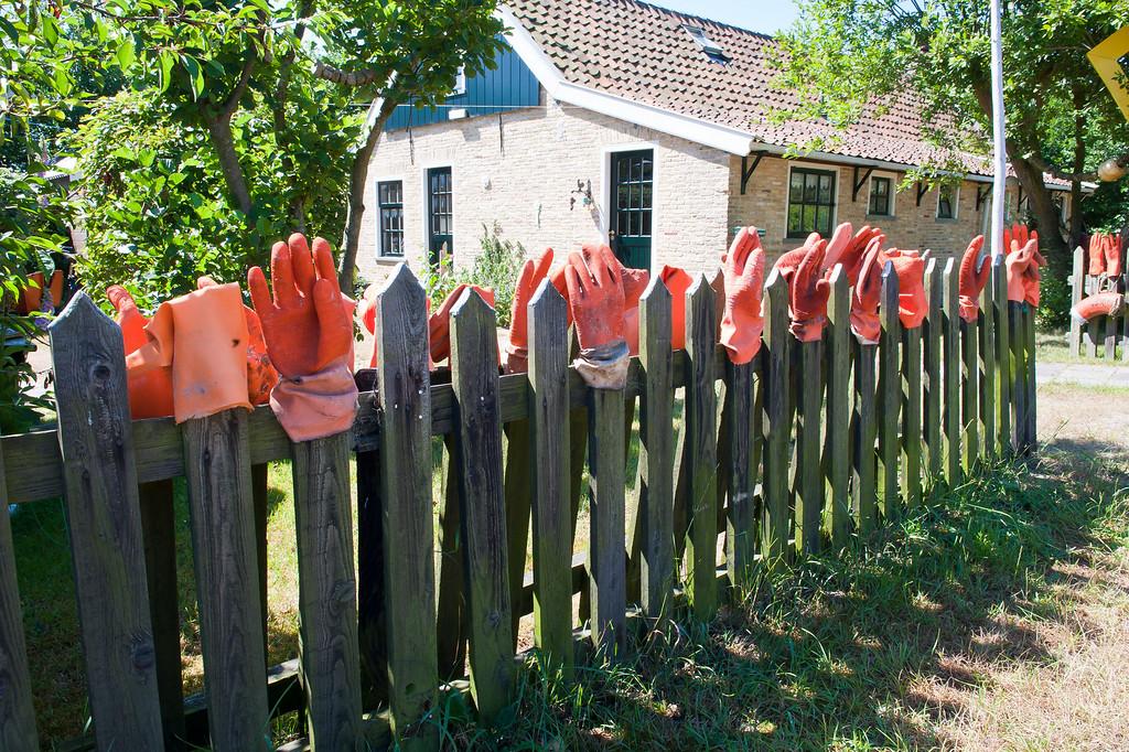 Glove Art on the Island