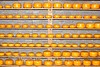 Volendam - Cheese Shop - Cheese