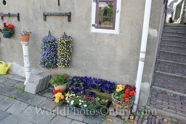 Marken - Flowers