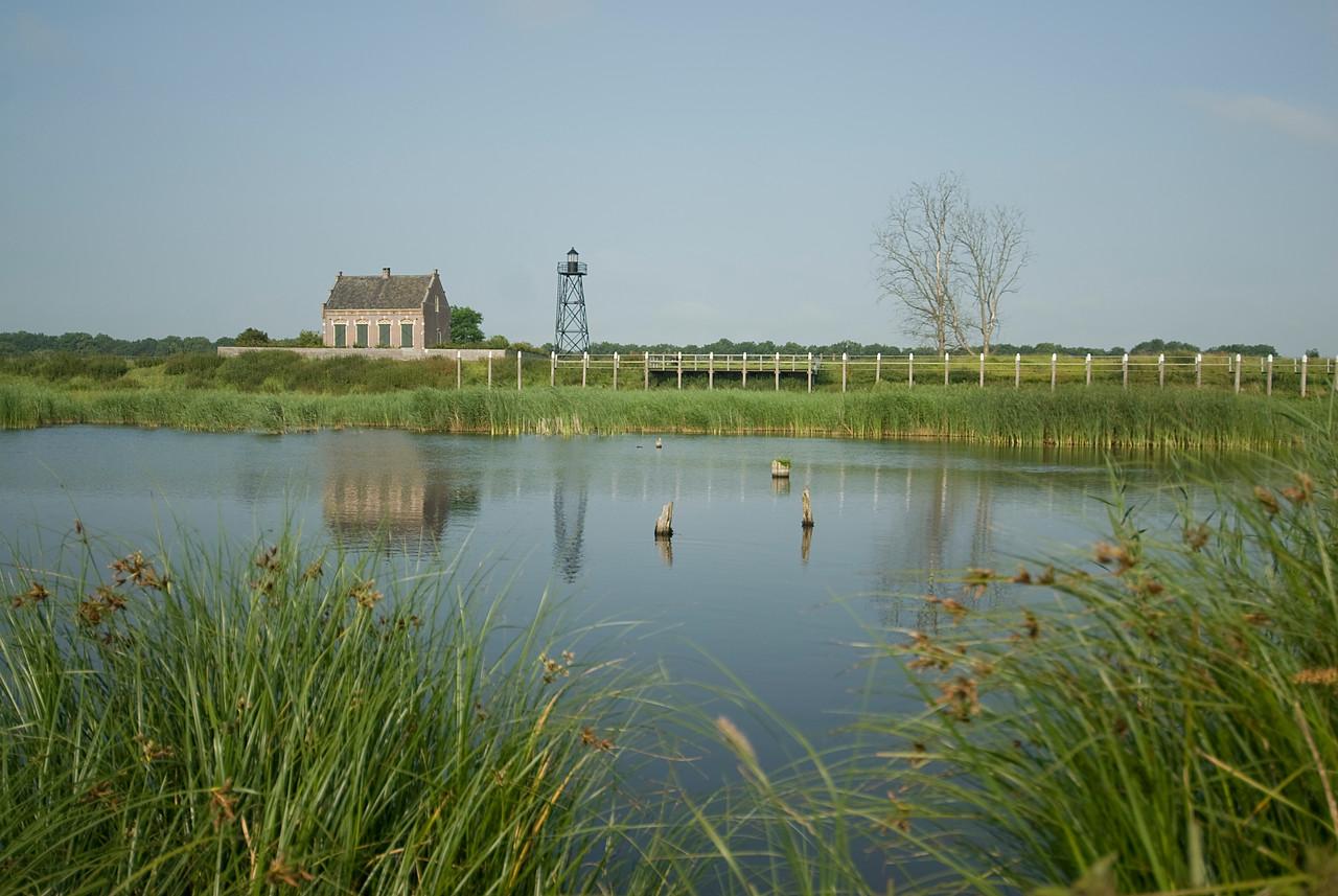 Small swamp in Schokland, Netherlands