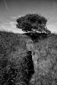 Forgotten Bunker WS60 Normandy