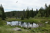 Bergen - Mt  Rundemanen Hike 6 - Brushytten Pond