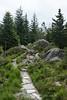 Bergen - Mt  Rundemanen Hike 7