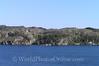 Byfjorden Fjord