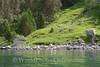 Geiranger Fjord -  Shack 2