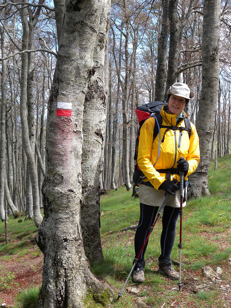 Di beside a GR marker. The forest here is just starting to come into leaf.