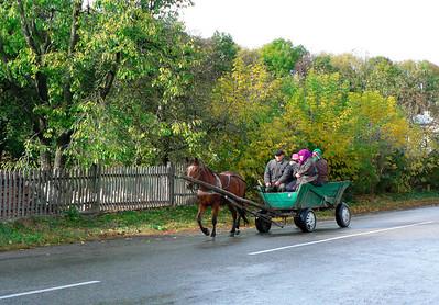 horse & wagon Ukraine