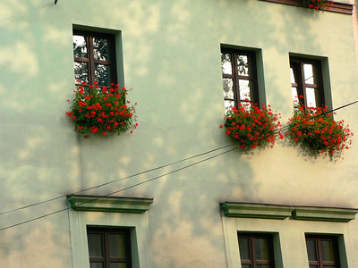 Krakow windows
