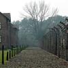 fence in Auschwitz