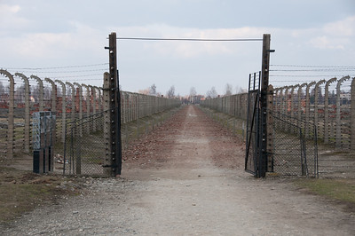 Barbed wire fencing in Auschwitz Birkenau in Poland