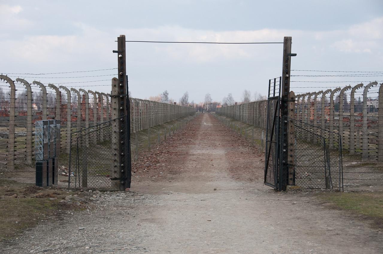 Barbed wire fencing in Auschwitz Birkenau in Poland