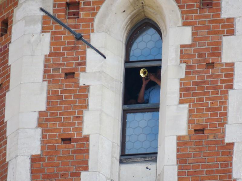Krakow trumpeter