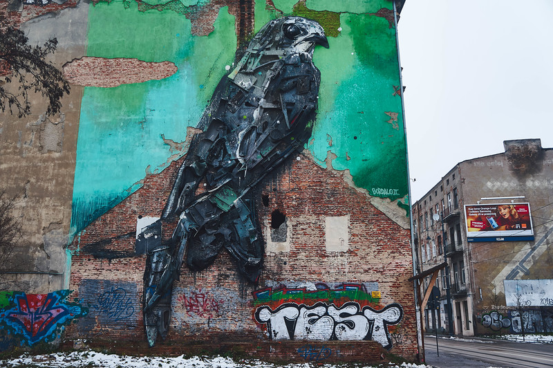 Apus by Bordallo II in Lodz, Poland