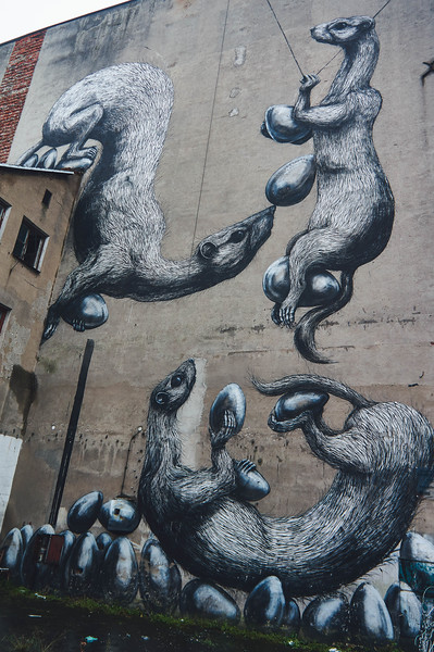 Roa street art in Lodz, Poland