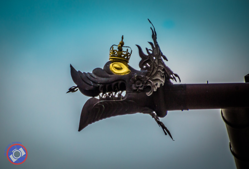 A Dragon Gargoyle on the side of the Cathedral (©simon@myeclecticimages.com)