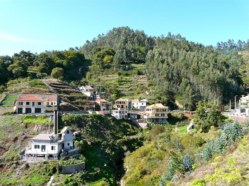 Madeira mountainside