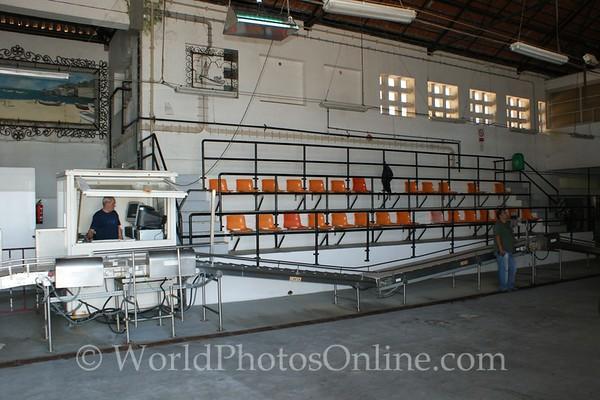 Cascais - Fish Market - Auction Chairs