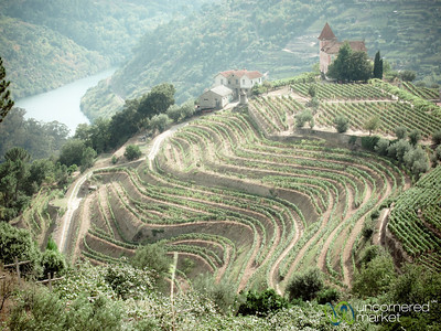 Portugal Travel Photos