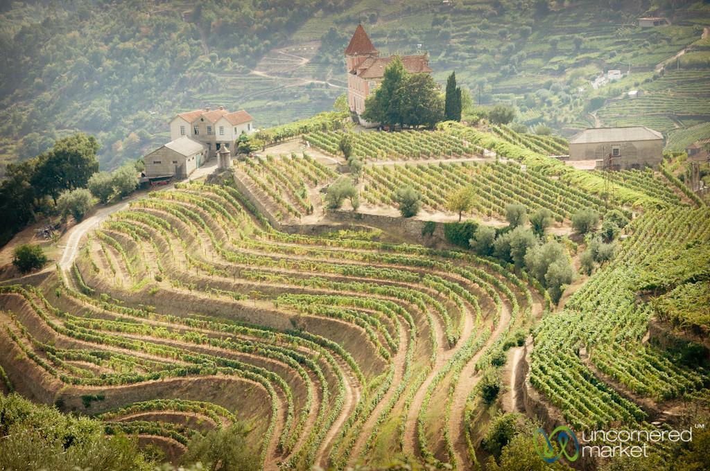 Douro Valley Landscape - Portugal