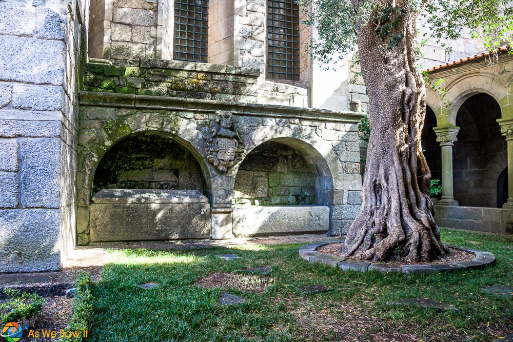Olive tree and walls of Our Lady of Olives monastery in Guimaraes Portugal