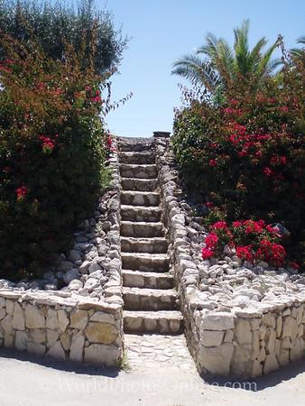 Azeitão - Bacalhoa Winery - Irrigation pond steps