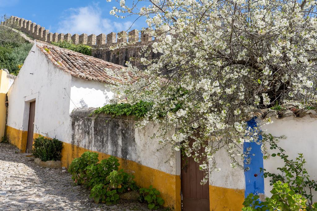 Óbidos wall